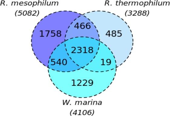 Figure 4.