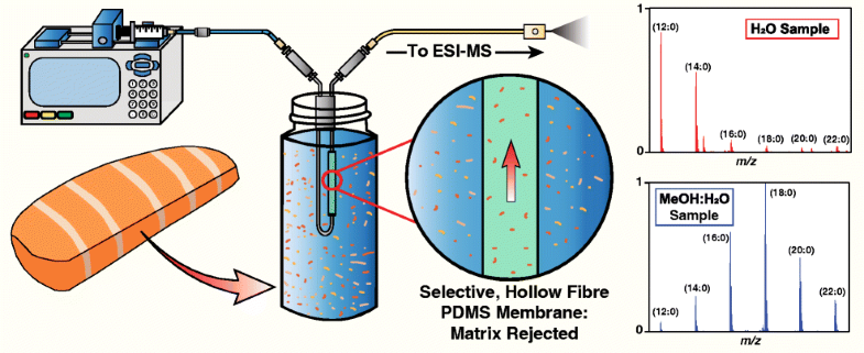 Polymers | Free Full-Text | Comparison of Membrane Inlet ... |Membrane Introduction Mass Spectrometry