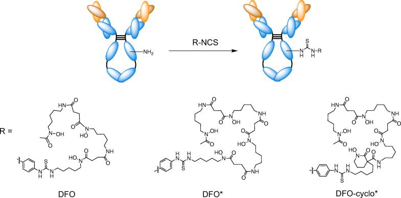 Evaluation of a 3-hydroxypyridin-2-one (2,3-HOPO) Based