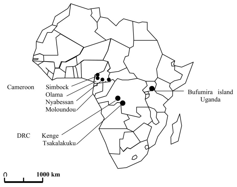Population Structure Of The Malaria Vector Anopheles