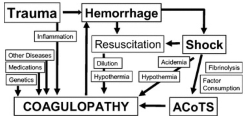 the contemporary role of blood products and components used in trauma resuscitation
