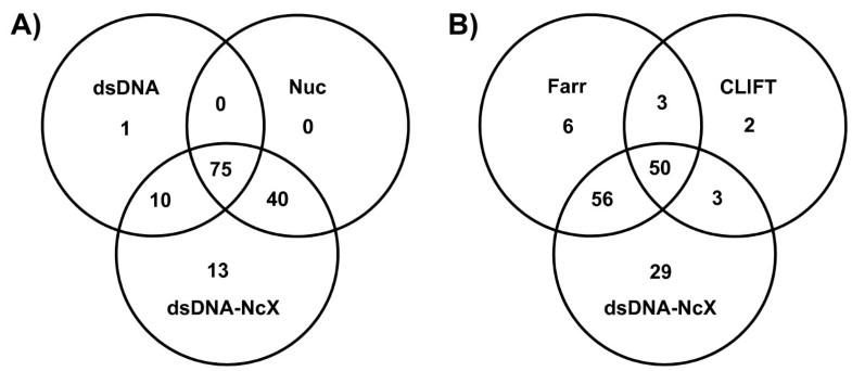 Anti Dsdna Ncx Elisa Dsdna Loaded Nucleosomes Improve