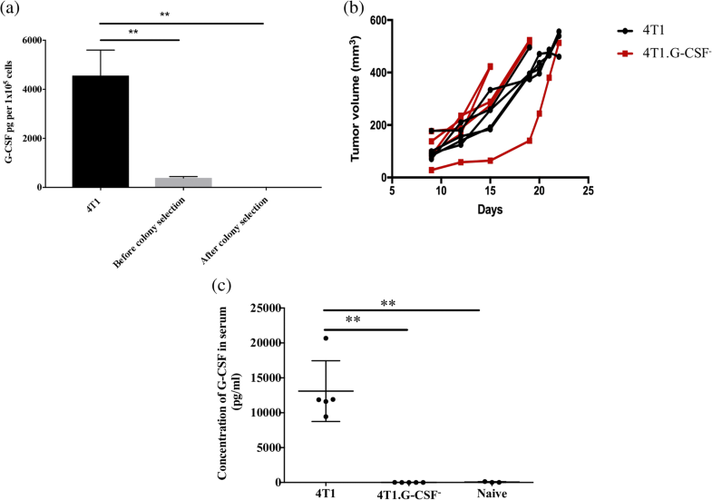 Tumor-Derived Granulocyte Colony-Stimulating Factor Diminishes Efficacy Of Breast -6474