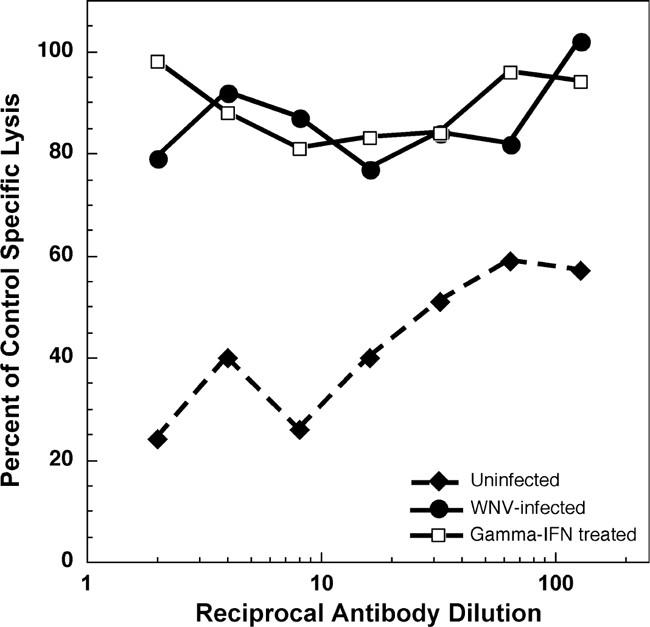 Enhanced Antigen Processing Or Immune Evasion West Nile