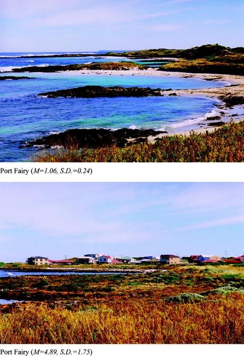 p 263 30 Return Address Labels Scenic Beach SUMMER Buy3 get1 free