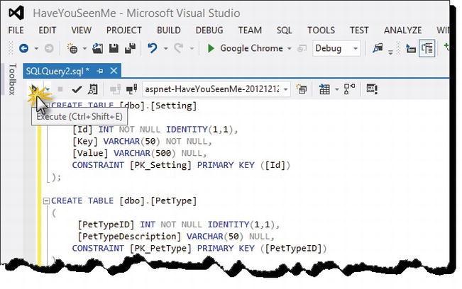"The ""Have You Seen Me?"" ASP NET MVC 4 Web Application"