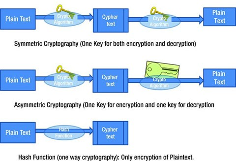 Cryptography | SpringerLink