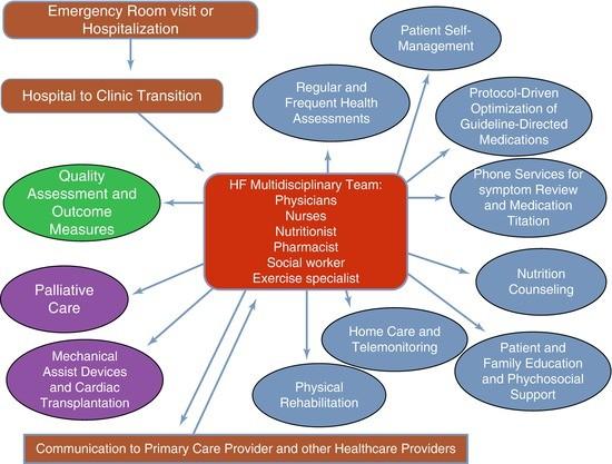 Heart Failure Management and Development of Heart Failure
