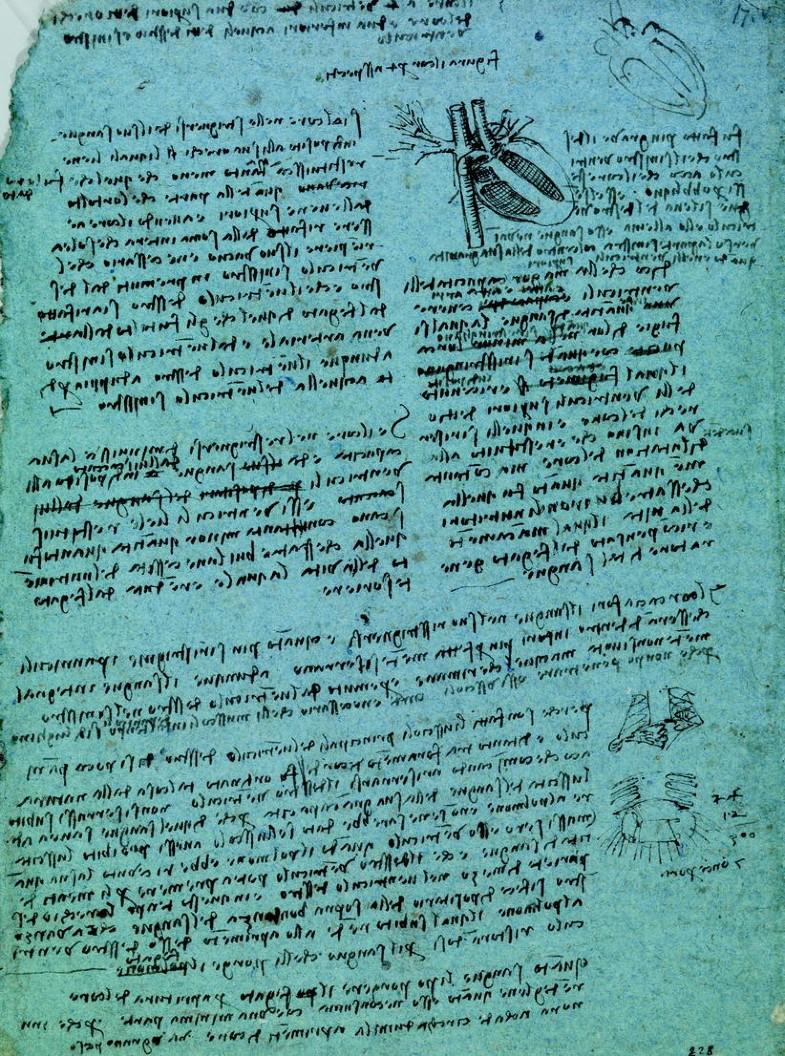 Leonardo's Use of Drawing | SpringerLink