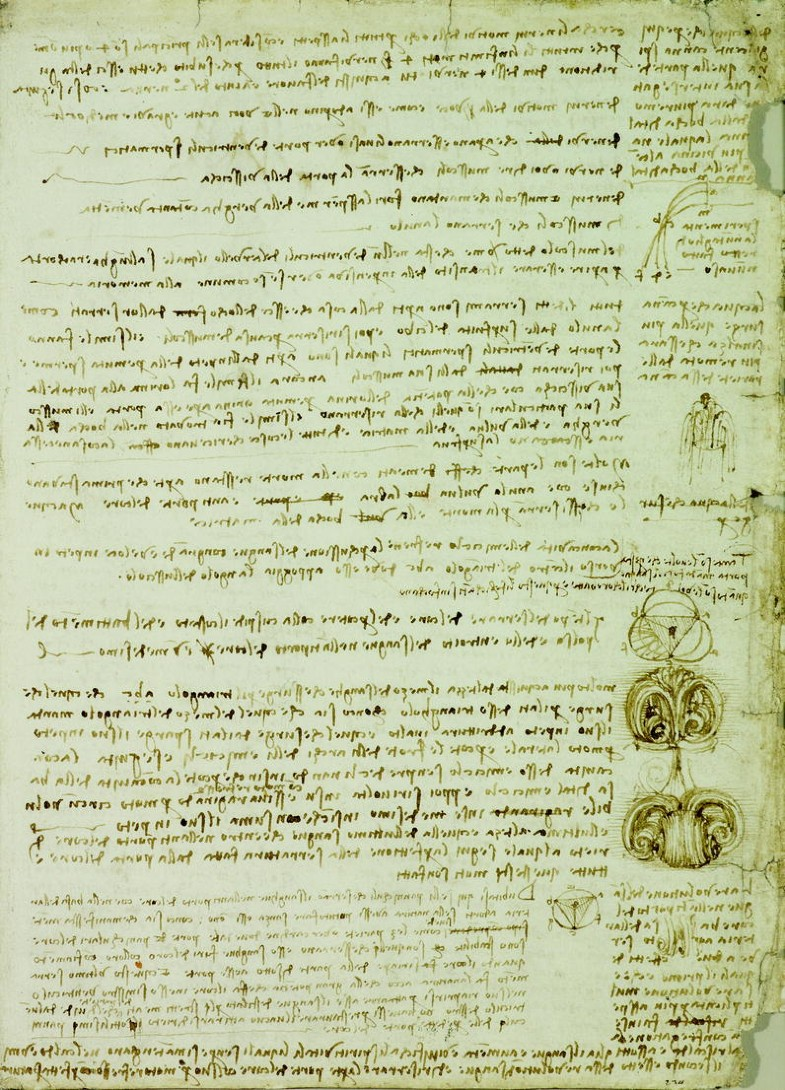 Scollare Carta Da Parati.Leonardo S Use Of Drawing Springerlink