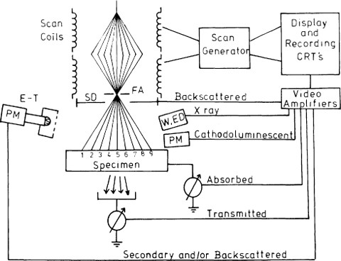 Image formation in the scanning electron microscope springerlink keywords secondary electron backscatter ccuart Gallery