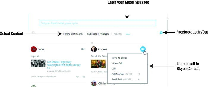 Using Skype on the Desktop | SpringerLink