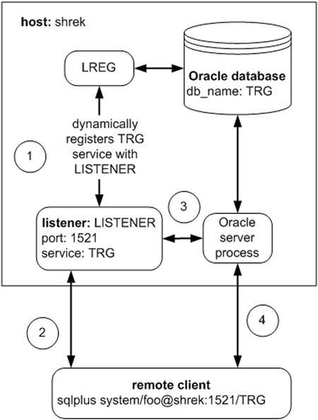 Oracle Net Primer | SpringerLink