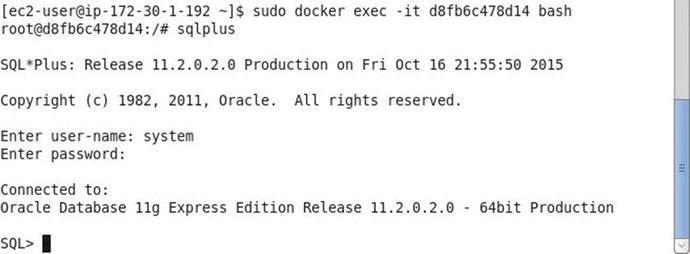 Using Oracle Database   SpringerLink