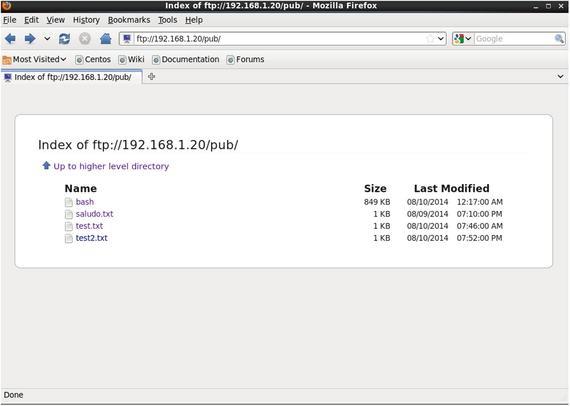 FTP Server | SpringerLink