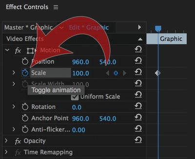 Motion Graphics Inside Premiere Pro | SpringerLink