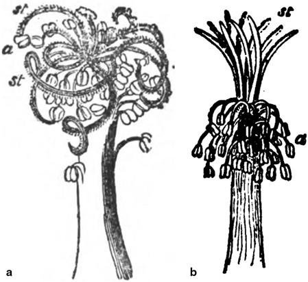 CONCEPTS IN BIOLOGY | SpringerLink