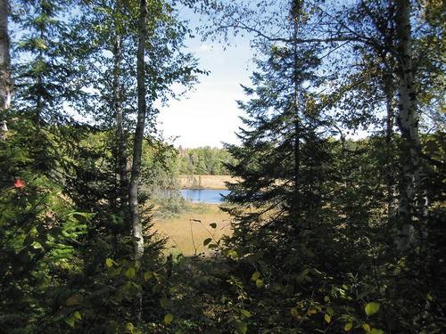 Causes of Landscape Pattern | SpringerLink