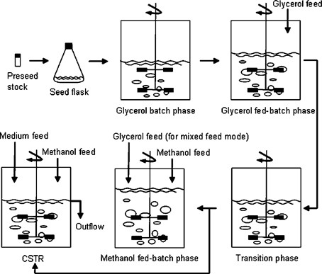 Rational Design and Optimization of Fed-Batch and Continuous ...