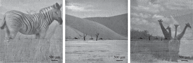 Fig. 17.60