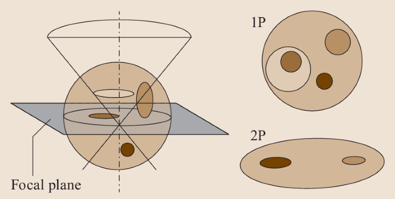 Fig. 21.2