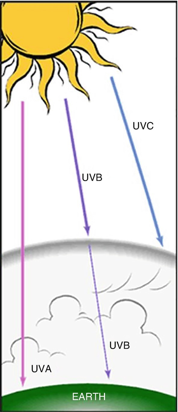 Fig. 14.8