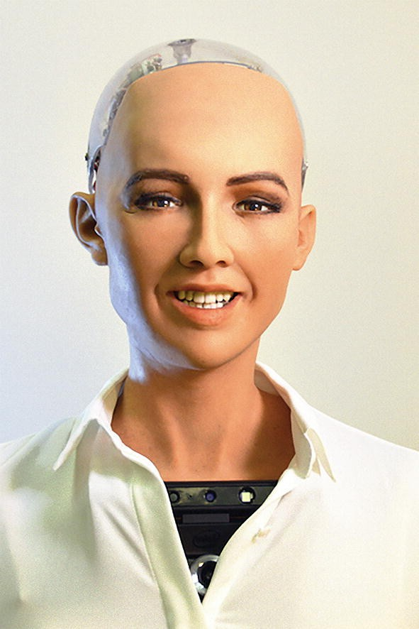 The Use of Social Robots and the Uncanny Valley Phenomenon