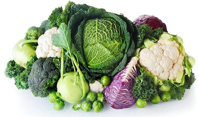 ed harris cabbage diet
