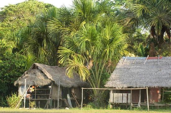 rot Diesel Fischermann//Jungle Style Hut