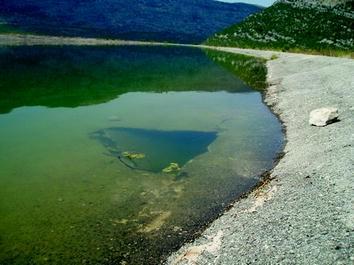 Other Home Furniture Diy Aquatic Dam Stop Leak 1kg Easily Seals To Stop Leaking Ponds Dams Home Furniture Diy Quatrok Com Br