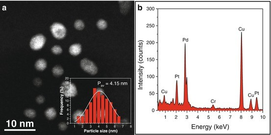 Synthesis and Characterization of Bimetallic Nanoparticles by Cs