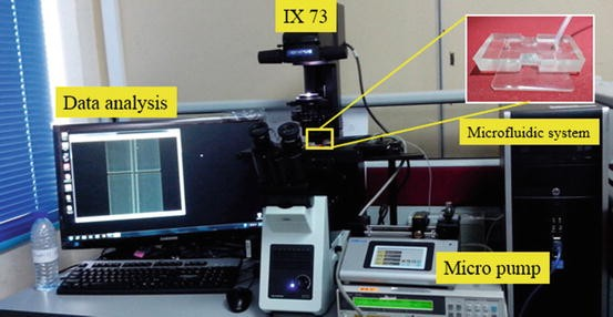Microfluidics for Mass Measurement of Miniature Object Like Single