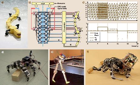 Biologically Inspired Robotics | SpringerLink