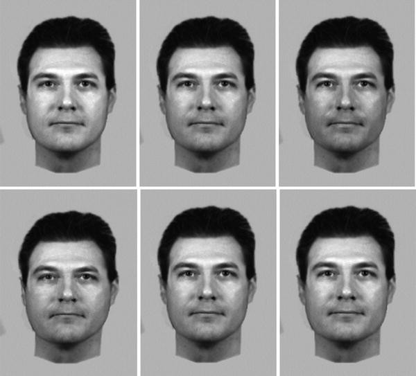 Estimating the Appearance of the Missing: Forensic Age
