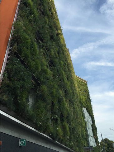 Nature Based Solutions And Buildings The Power Of