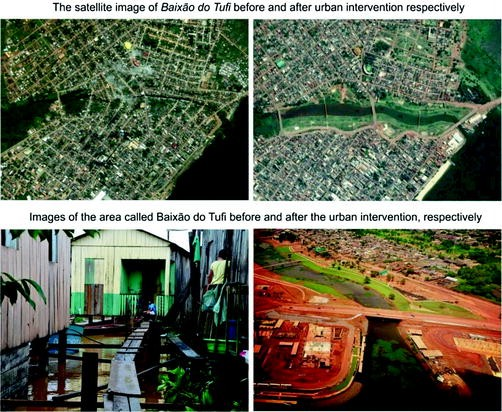 Urban tropical forest where nature and human settlements are assets open image in new window fandeluxe Images