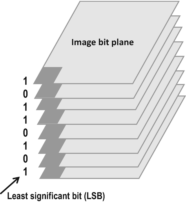 Fig. 4