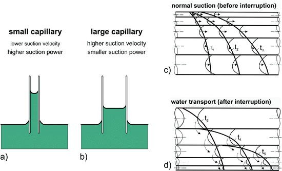 Physical and Mechanical Properties of Rocks | SpringerLink