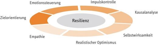 resilienz die unentdeckte fahigkeit der wirklich erfolgreichen
