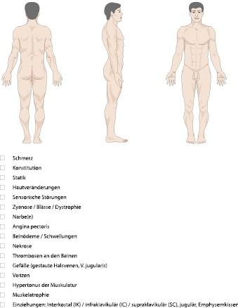 Untersuchung von Abdomen und Thorax | SpringerLink