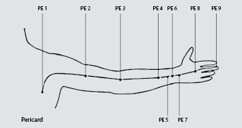 perikard meridian verlauf