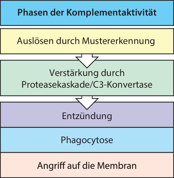 Abb.2.13