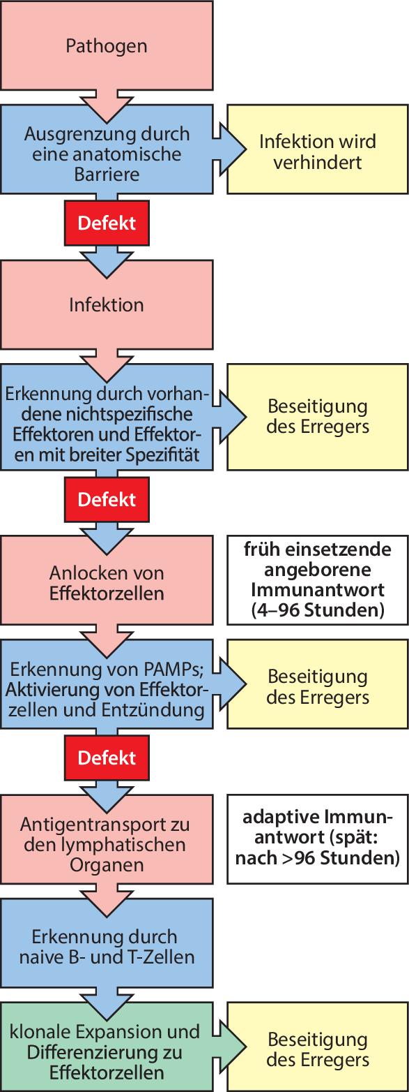 Abb.2.1