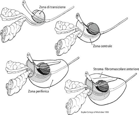 Fig. I.9.1.