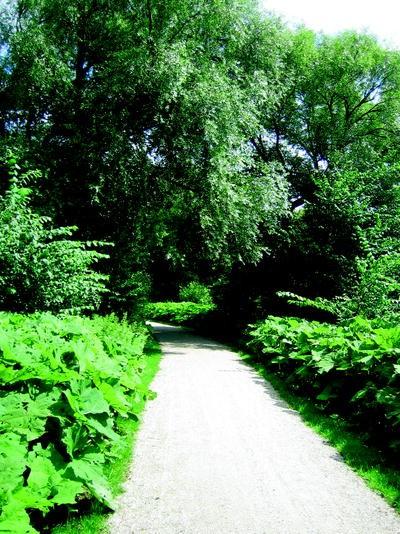 7bda6e45466 Contributions of Natural Environments to Physical Activity ...