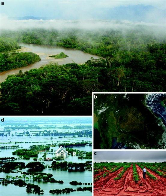Natural Hazards Mitigation Services of Carbon-Rich
