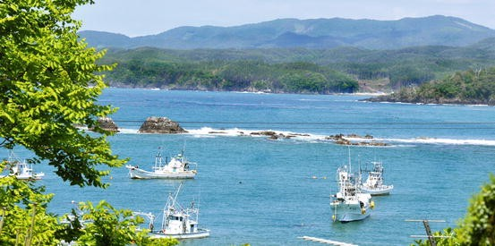 The Tsunami and Earthquake in Miyagi Prefecture and Sanriku 2011