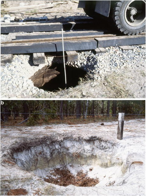 Triggering Mechanisms for Sinkholes | SpringerLink