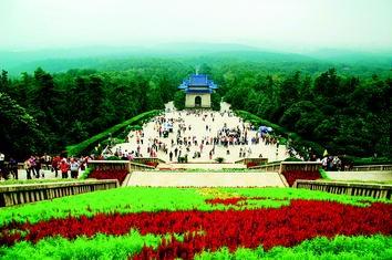 shop majestic home goods red plantation floral square.htm advancing    cases springerlink  advancing    cases springerlink