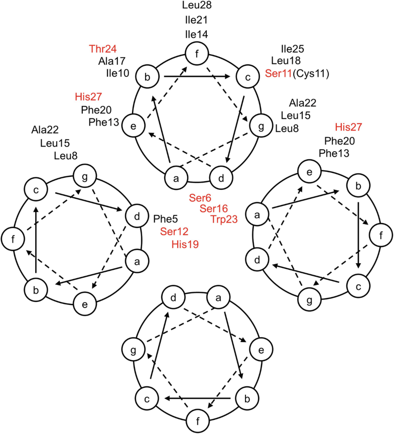 Fig. 6.4d